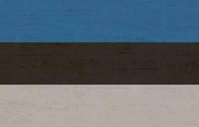 Форум финно-угорских народов в Эстонии сопровождался провокацией в отношении России