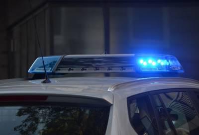 Четырехлетняя девочка погибла после падения из окна в Петербурге
