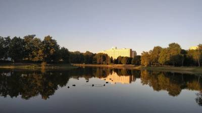 Заксобрание Петербурга просит выделить деньги на уборку парка Авиаторов