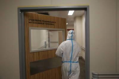 Голикова: Петербург может захватить индийский штамм коронавируса