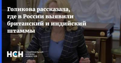 Голикова рассказала, где в России выявили британский и индийский штаммы