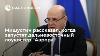 """Мишустин рассказал, что дальневосточный лоукостер """"Аврора"""" совершит первые полеты в июле"""