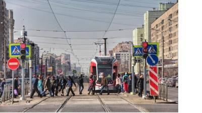 Объявлены тендеры на 1,6 млрд рублей на ремонт трамвайных путей в пяти районах Петербурга