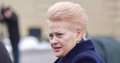 """""""В Минобороны Украины не знали как принять помощь от нас, не получив выгоды"""", - экс-президент Литвы"""