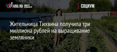 Жительница Тихвина получила три миллиона рублей на выращивание земляники