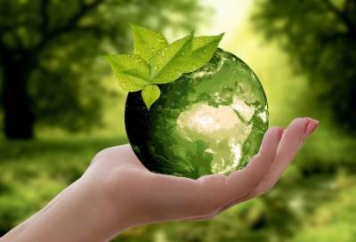"""Приозерский район """"зеленеет"""": региональные власти рассказали, как муниципалитет становится экологичнее"""