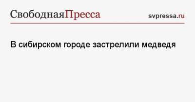 В сибирском городе застрелили медведя