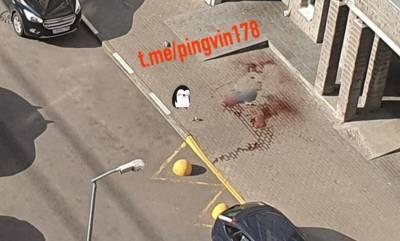Девушку разорвало пополам после падения с высотки по улице Коллонтай — фото и видео