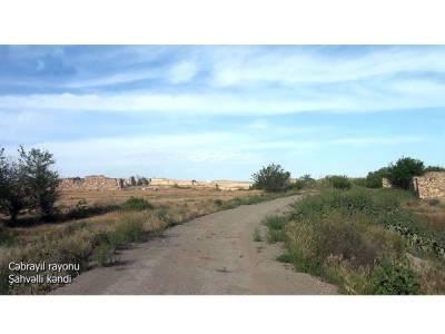 Освобожденное село Шахвелли Джебраильского района (ВИДЕО)