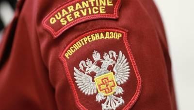 Число ковидных тестов в Петербурге снова упало ниже 40 тыс.