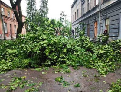 Более 800 населенных пунктов Украины остались без электроснабжения