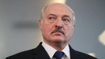 Как Александр Лукашенко отдал элитную землю в Минске дружественным сербским бизнесменам