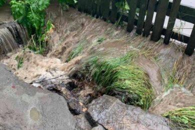 Размыты дороги и повалены деревья: последствия сильного урагана под Киевом. ФОТО