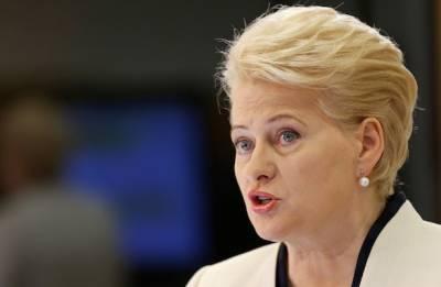 «Мне стыдно за это»: экс-президент Литвы рассказала о Западной Европе и «Северном потоке-2»