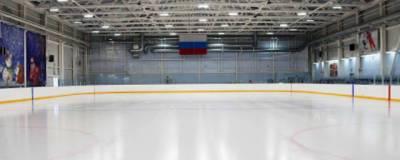 В Кургане выбрали место для третьей ледовой арены