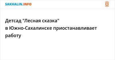 """Детсад """"Лесная сказка"""" в Южно-Сахалинске приостанавливает работу"""