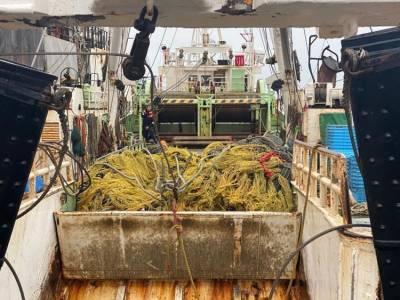Япония требует освободить рыбаков, задержанных сахалинскими пограничниками