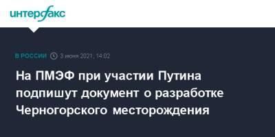На ПМЭФ при участии Путина подпишут документ о разработке Черногорского месторождения