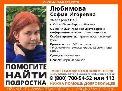 В Санкт-Петербурге без вести пропала 14-летняя девочка