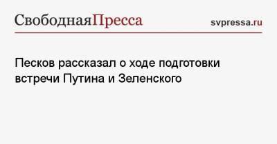 Песков рассказал о ходе подготовки встречи Путина и Зеленского