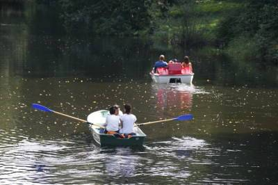 В субботу в Ленобласти ожидается по-настоящему летняя погода