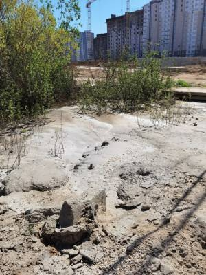 Жители Твери жалуются на строителей, сливающих бетон в кусты