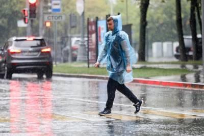 Москвичей предупредили о грозе и сильном ветре 6 июня