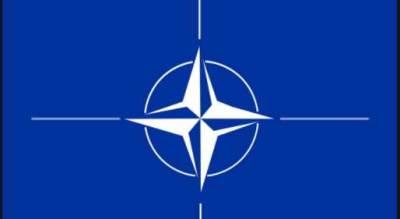 В Литве начали жаловаться на поведение солдат НАТО во время учений