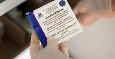 """Названа предварительная стоимость """"вакцинных туров"""" в Россию для иностранцев"""