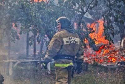 В Кургане ликвидировали крупное возгорание в СНТ «Дружба»