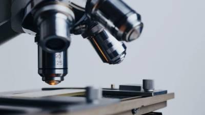 Петербургским учёным вручили государственные премии за научные разработки