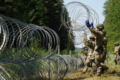 Евросоюз пошлет вертолеты для контроля границы Литвы с Белоруссией