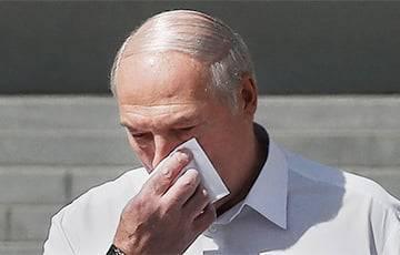 Ник и Майк, погреб в Гомельской области, язык Азаренка: что поведала больная фантазия Лукашенко
