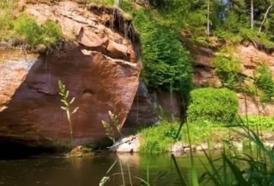 Александр Дрозденко показал уникальный природный памятник в Гатчинском районе