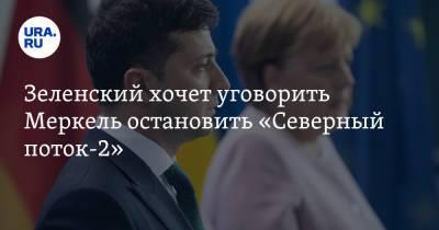 Зеленский хочет уговорить Меркель остановить «Северный поток-2»