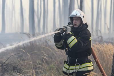 Шойгу сообщил, что Минобороны РФ помогает тушить лесные пожары в Якутии