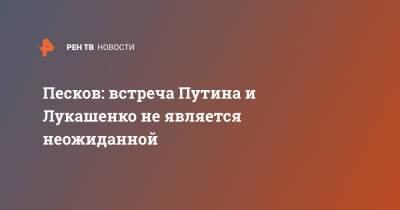 Песков: встреча Путина и Лукашенко не является неожиданной