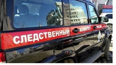 В Петербурге арестовали женщину, обвиняемую в смерти собственного сына