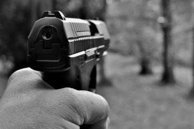 Полицейские задержали рязанца, незаконно хранившего огнестрельное оружие