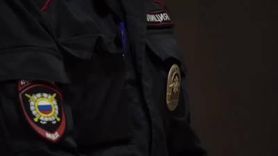 Полиция Петербурга задержала банду за организацию незаконной миграции