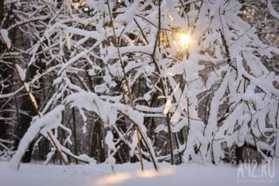 Синоптик рассказал, какая зима придёт в Россию на смену аномально жаркому лету