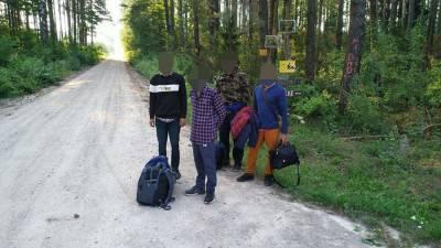 За сутки на границе Литвы с Беларусью задержаны 57 нелегальных мигрантов