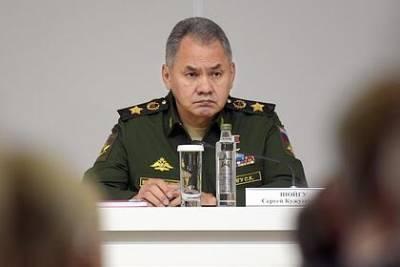 После критики Шойгу в военную часть поставят баранки