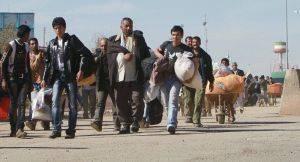 Узбекистан и Германия объединяются против афганских беженцев?