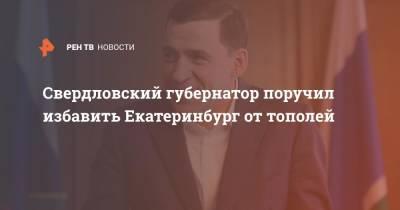 Свердловский губернатор поручил избавить Екатеринбург от тополей