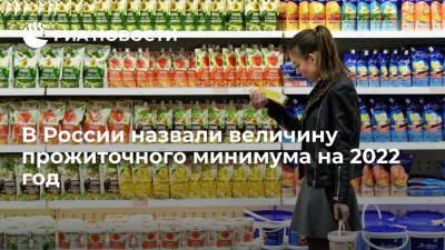 В России прожиточный минимум на 2022 год составит 11 950 рублей