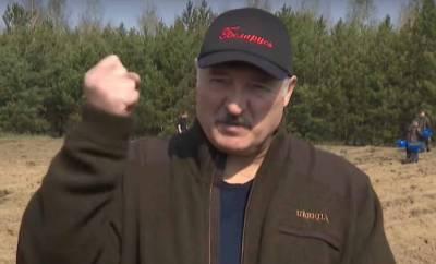 Лукашенко рассказал о проведенной в Белоруссии масштабной спецоперации