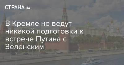 В Кремле не ведут никакой подготовки к встрече Путина с Зеленским