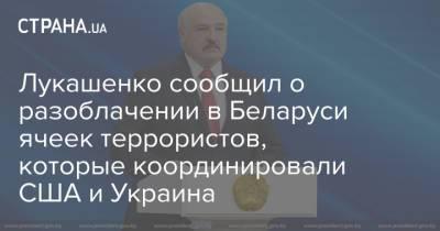 Лукашенко сообщил о разоблачении в Беларуси ячеек террористов, которые координировали США и Украина