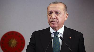Турция в числе мировых лидеров по борьбе с пандемией - Эрдоган